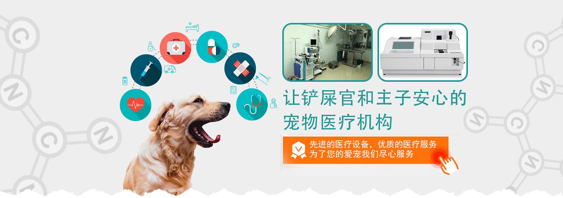 烟台宠物医院,烟台宠物美容,烟台宠物用品
